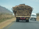 Over loaded lumber truck
